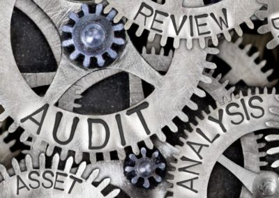 Audit of Customer Service Performance